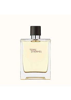 Hermès Terre D´Hermes Eau de Toilette 100 ml Vaporizador