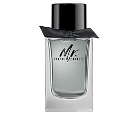 Burberry MR BURBERRY Eau de Toilette vaporizador 100 ml